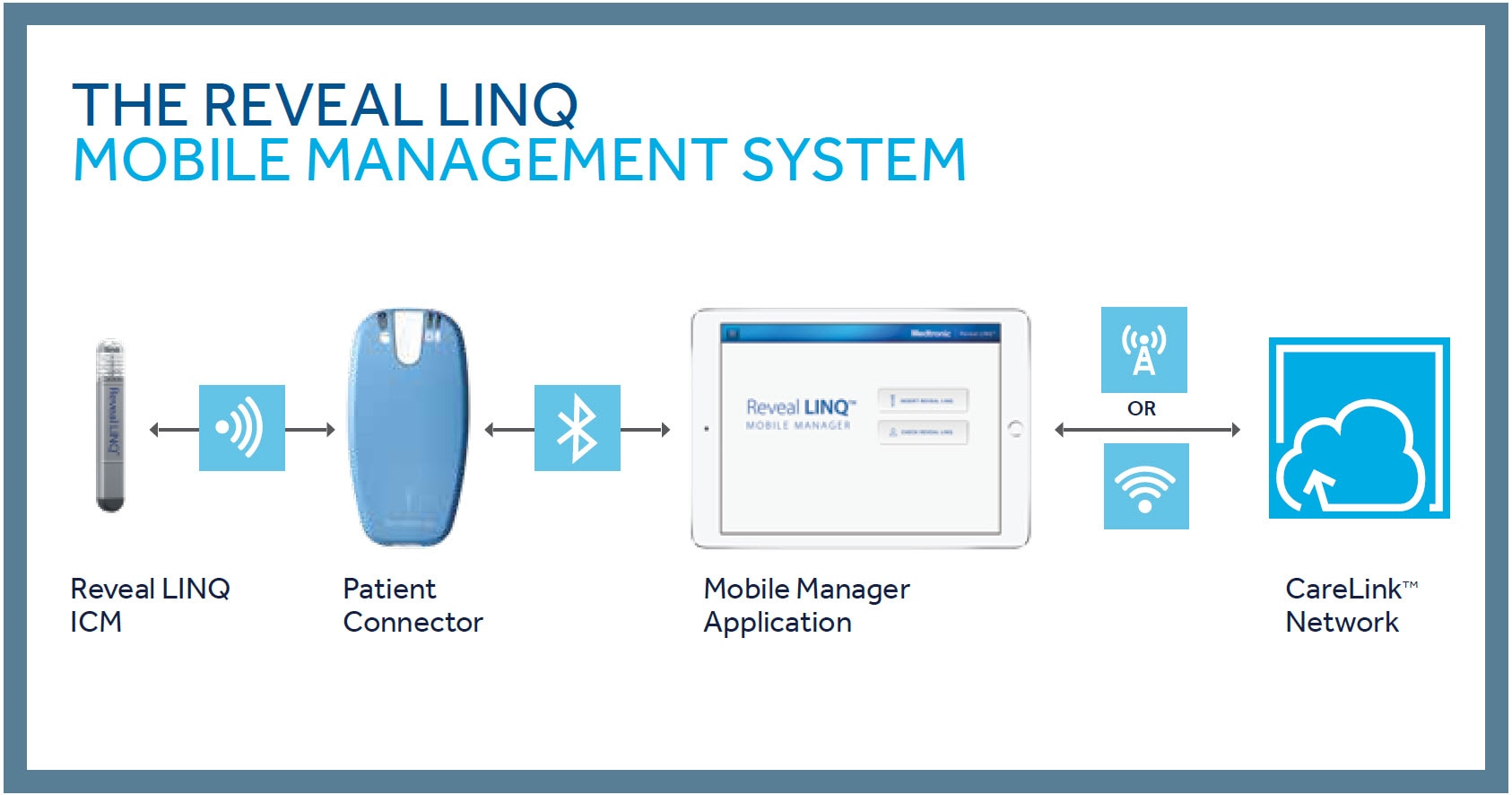 Reveal LINQ Mobile Management System